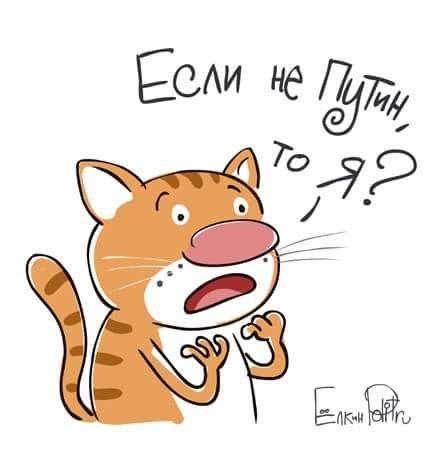 если не путин то кот